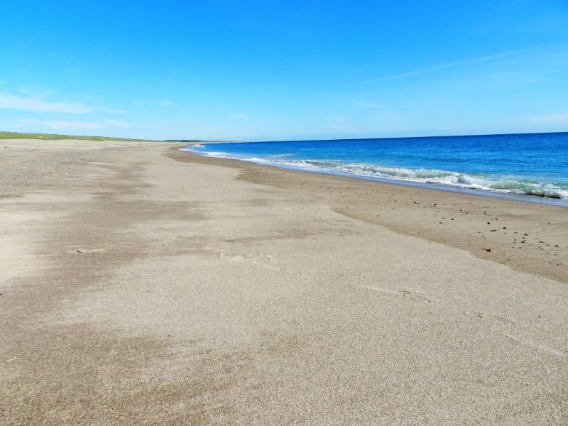 Nearby Rostoonstown Beach
