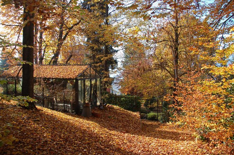 Villa Allegra - la casa verde