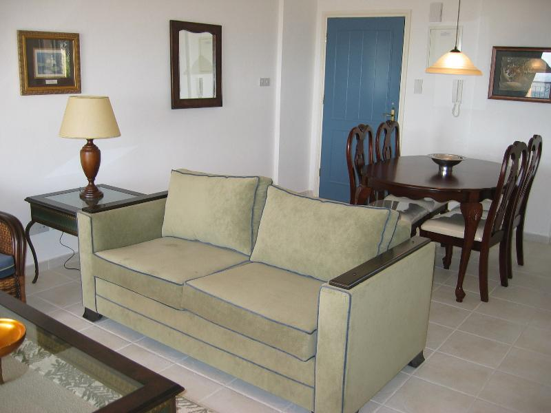 View of the large air conditioned dining and living area. Imported double sofa bed. Air conditioned.