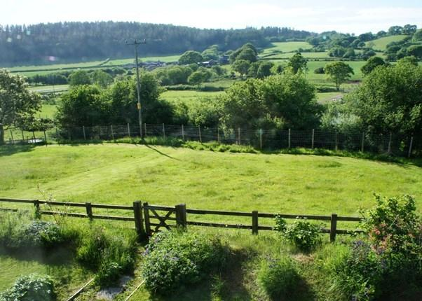 Securely fenced paddock to exercise your dog(s)