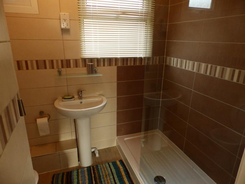 shower room with walk in shower and shaver socket, heated towel rail