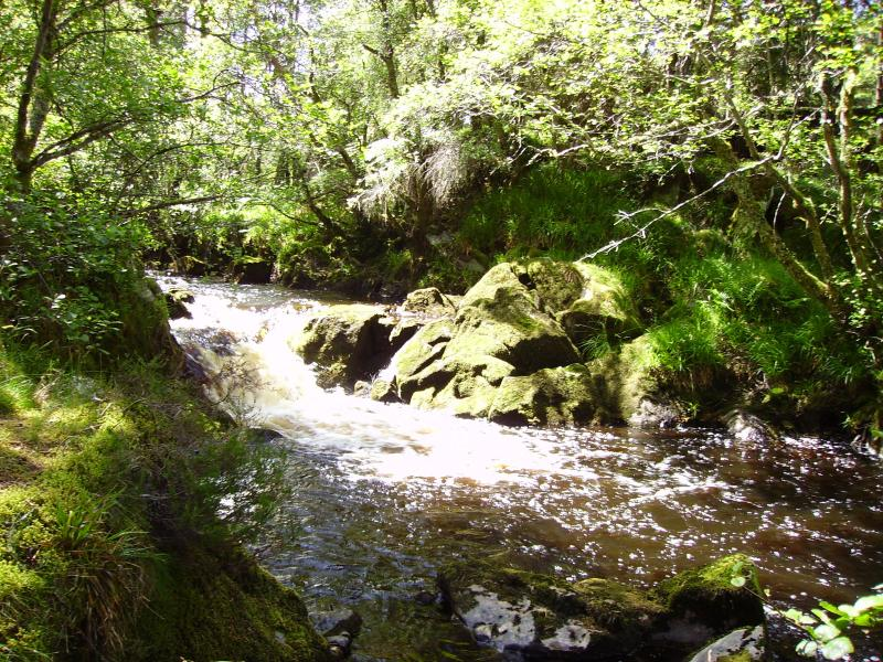 waterfalls (river walk)