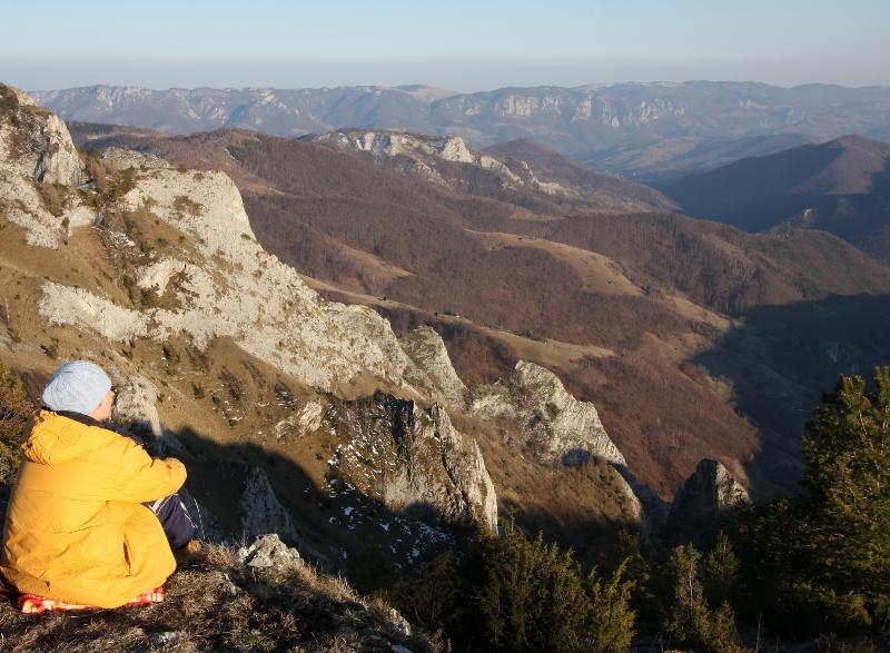 Natural reserve Scarita Belioara - large  landscape