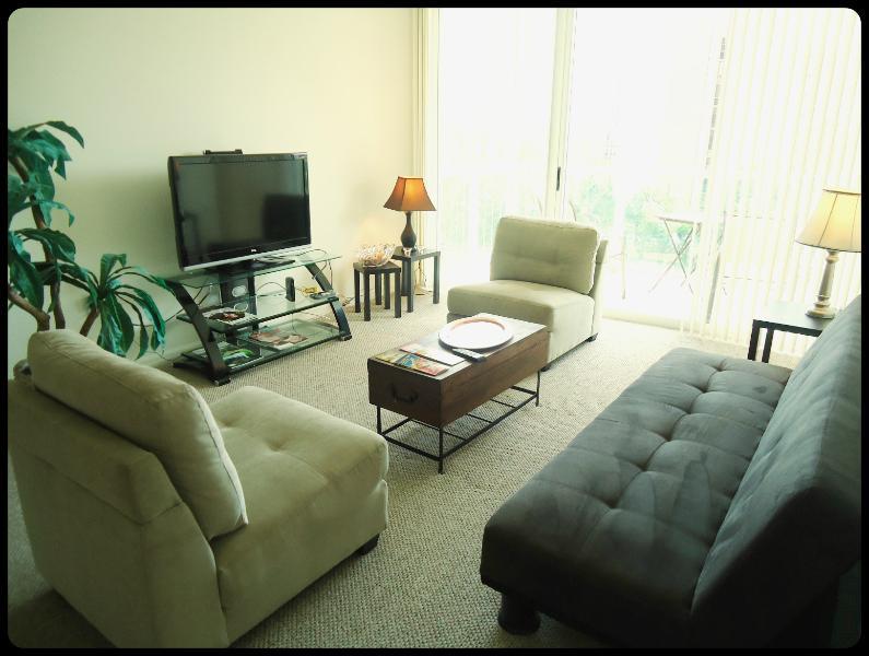 Confortable salon, tv câblée, wifi et canapés-lits.