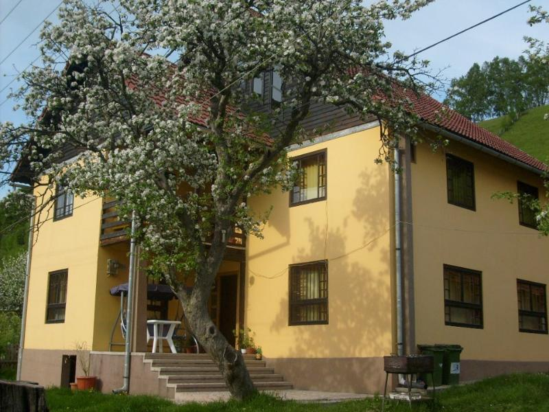 Pension Monica, vacation rental in Rucar