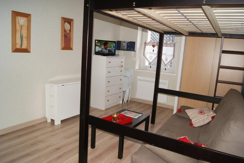 location appartement Le Mont-Dore Charmant studio