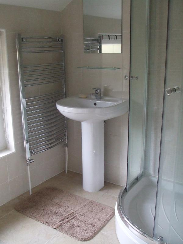 Gwelfor Bathroom with monsoon shower