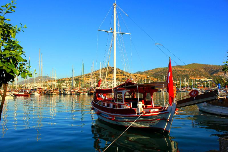 Bodrum harbour.  Boat trips to Kos