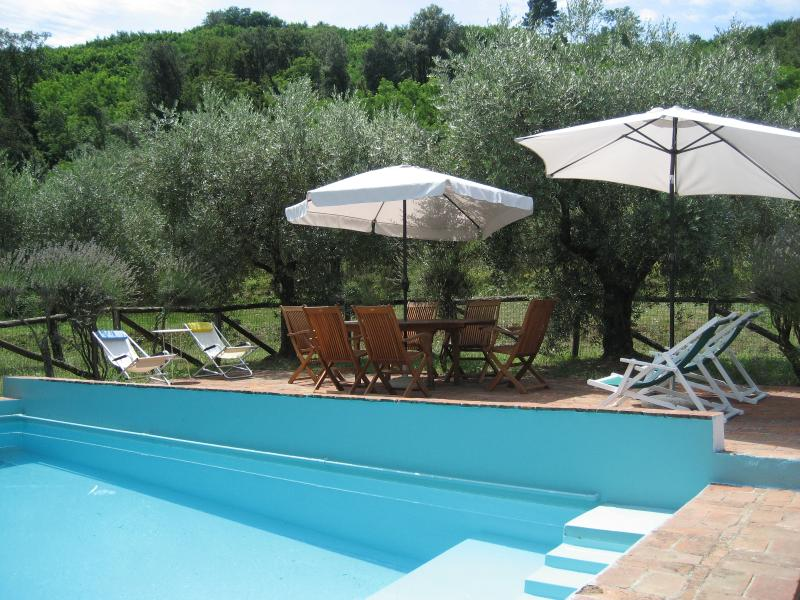 The secluded swimming pool is located among the olive trees some forty yards from the house.