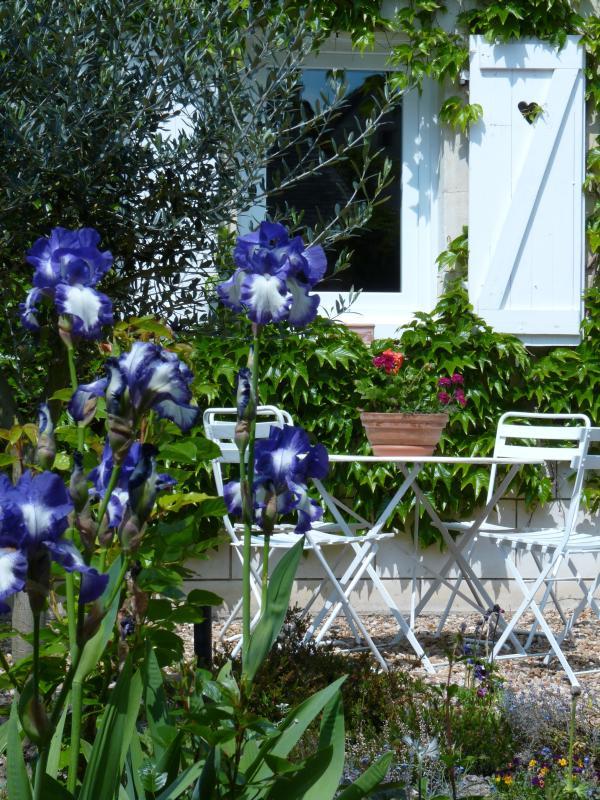 La terrasse privée est nichée au milieu des fleurs