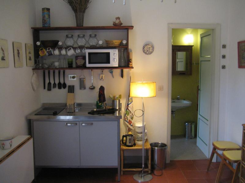 The kitchen corner: fridge/freezer under the two electric rings, sink to the right.