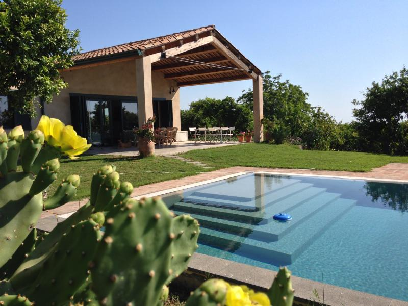 15 metre pool, with platfrom for small children, spacious terrace and lawn area