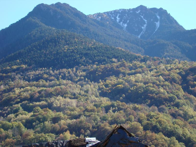 vista a la montaña, desde la terraza