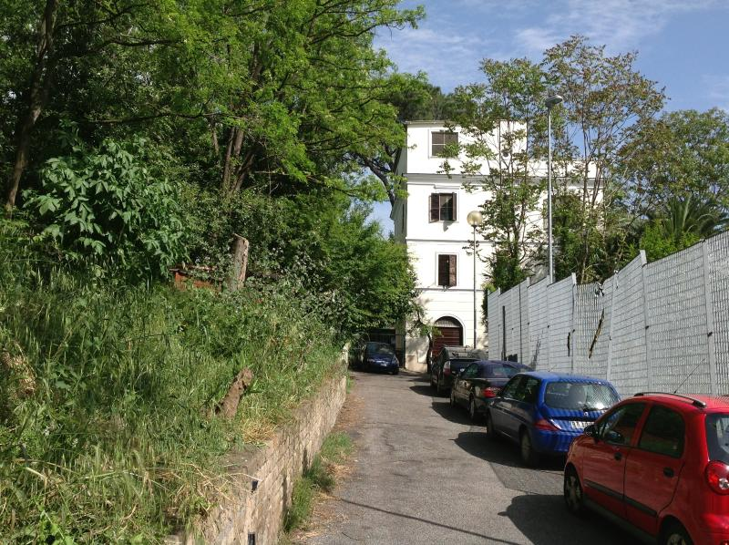 Common garden with private car park.