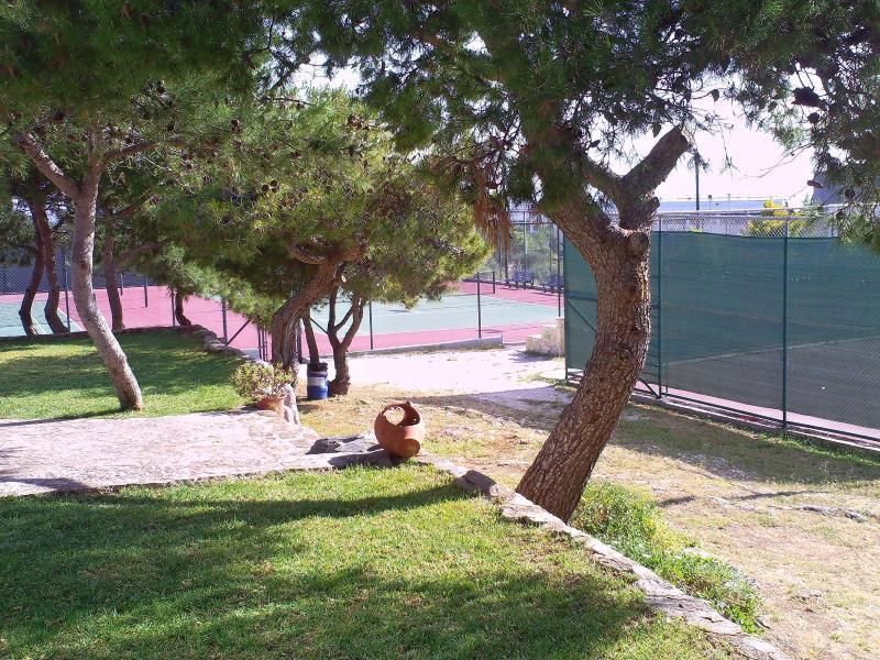 municipal tennis area