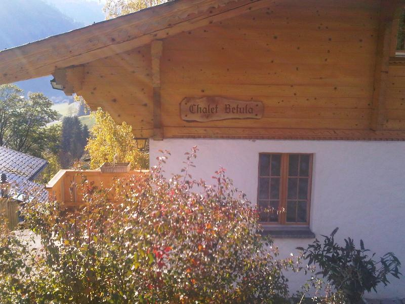 The corner of the chalet from the front