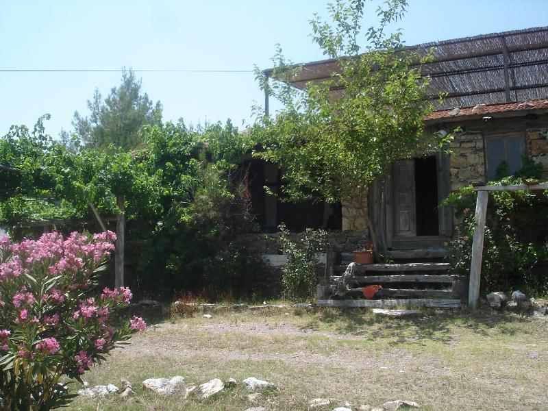 Gokpinar Country Home, holiday rental in Dorttepe