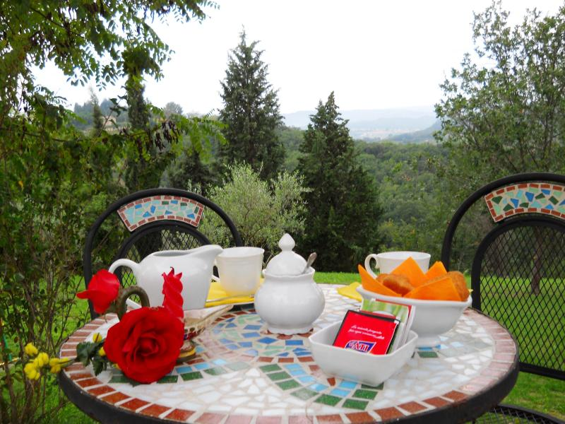 Apartment PEACH 2 guest, holiday rental in Vico D'elsa
