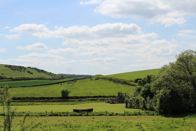 Views over the Millennium Green