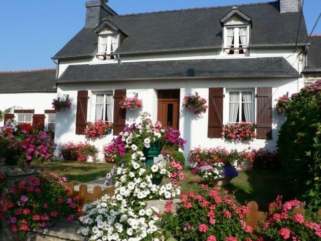 LE Grand Hortensia  PLEYBEN, holiday rental in Finistere