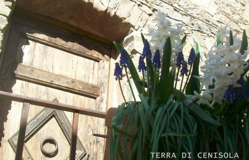 TERRA DI CENISOLA VETTA, location de vacances à Calice al Cornoviglio