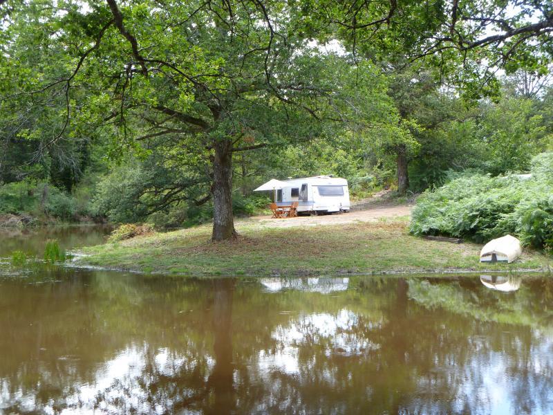 Caravan by Jungle lake