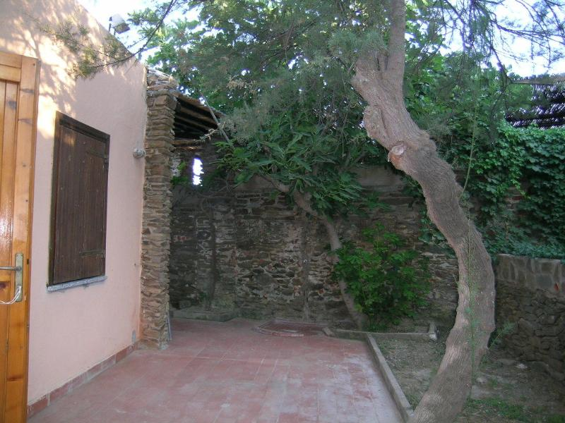 courtyard in the back house