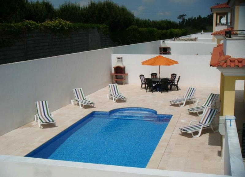 Large private pool with loungers and BBQ area