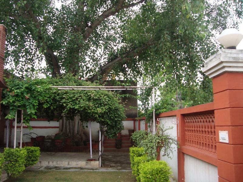Green pollution free Garden area