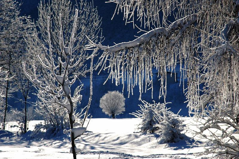 winter panorama near cottage