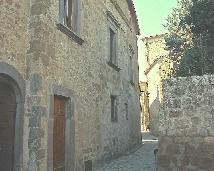 Palazzo Contino (XVIc.), in the heart of Civita, casa vacanza a Lubriano