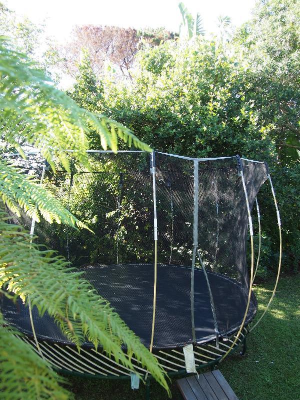 Trampoline in backyard