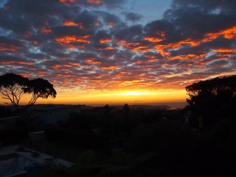 Sunrise view from upstairs deck to Longreef Headland