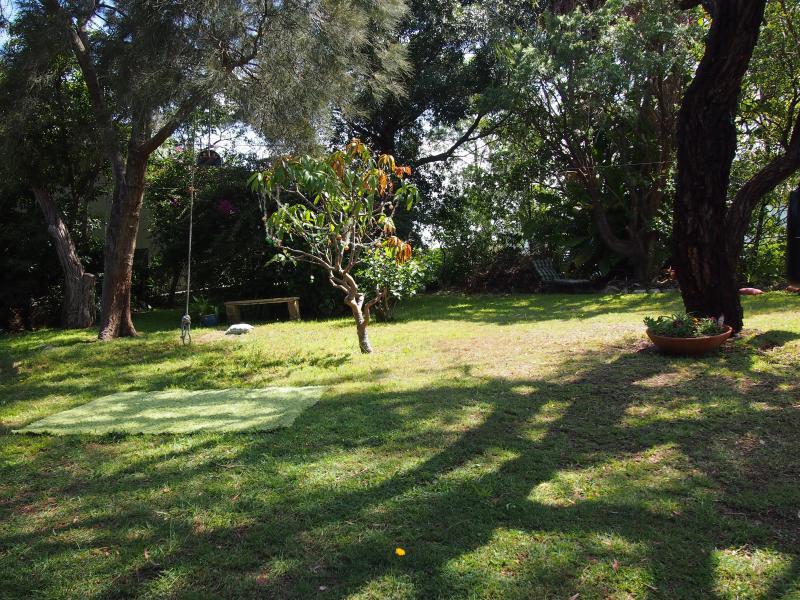 Front garden and Tarzan swing