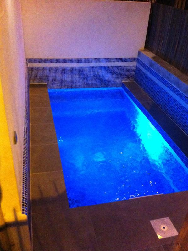 POOL AT NIGHT WITH LED REMOTE CONTROL MULTI COLOUR LIGHTING