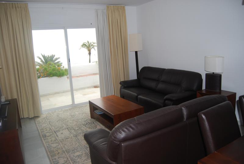 Living room, terrace with seaview