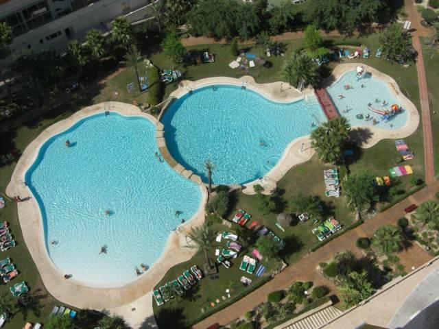 Lagoon style swimming pool