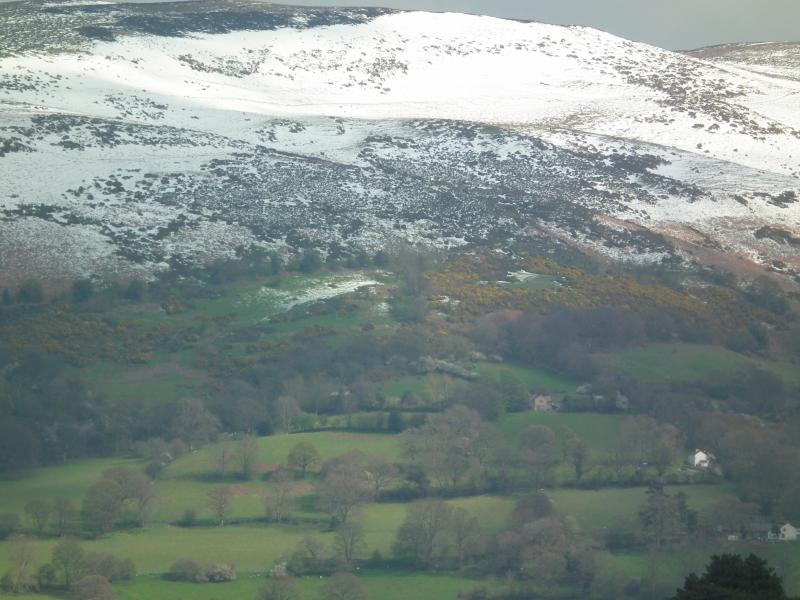 a snowy Moel y Parc with cottage located just to the right of red-brick house in centre