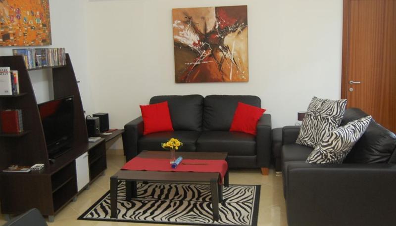 soggiorno con 2 sofà 3 posti e un divano letto matrimoniale e angolo cottura