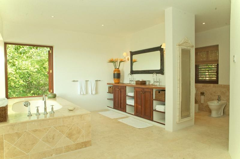 The Master bathroom leading to the shower room with WC, bidet and shower