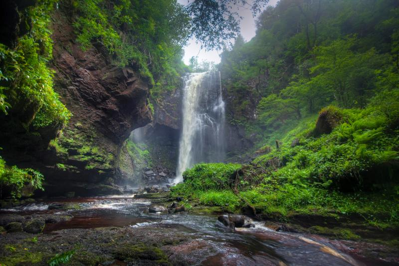 Discover the nearby Glenashdale Falls deep in the forest