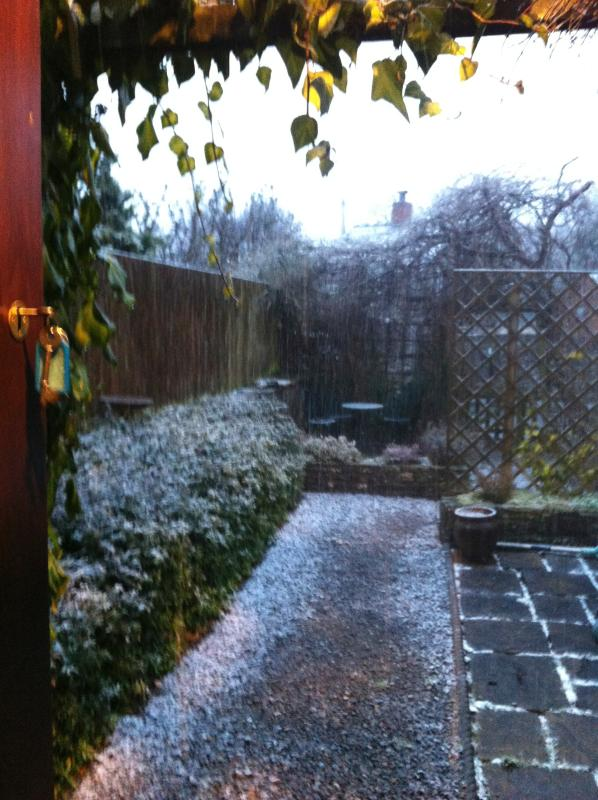 Garden with a sprinkle of snow