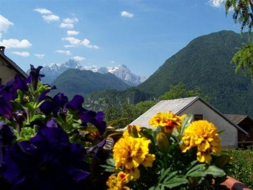 in front of the house - view to the Julian Alps