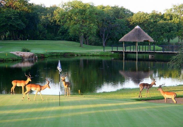 Hans Merenski 'golf in natura'