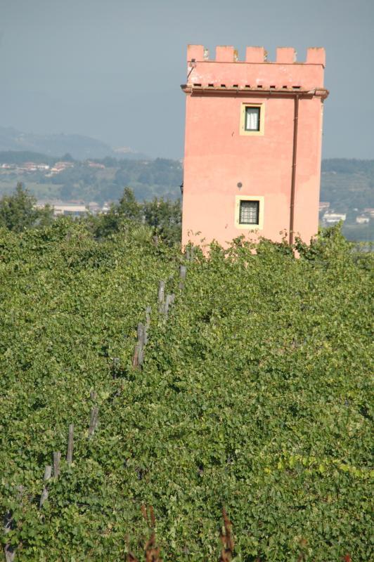 Appartamento la Torre (2 persone)