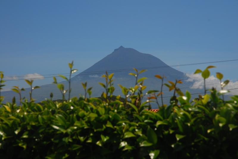 Pico island mountain looking at ue across the channel