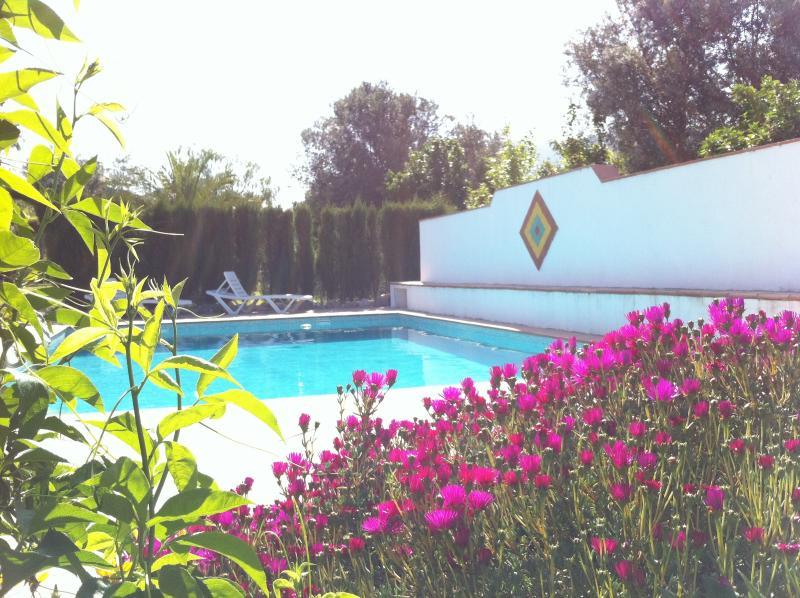 Fantastico 8 m x 5 m piscina con circostante terrazza e ombreggiato da pranzo / zona hanno visto dalla sala soggiorno