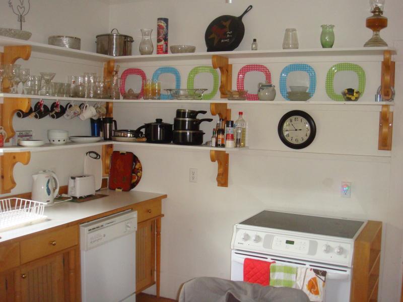 conceito moderno cozinha bem fornecido aberto.