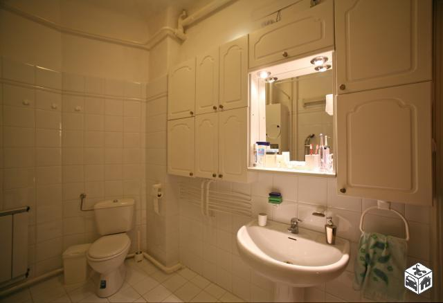 large bathroom with bathtub and toilet inside