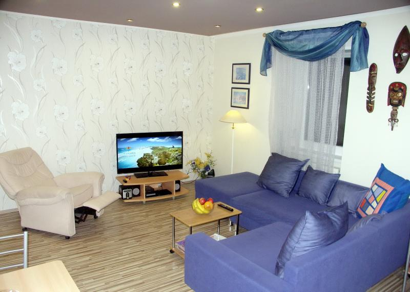 Living room with a phone and PC, a big 46inch smart TV + DVD player and movie library